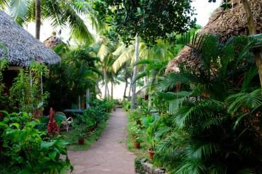 Kerala 606