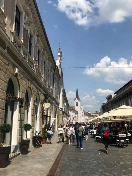Oradea 15