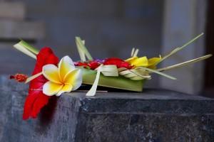 offerings Ubud, Bali