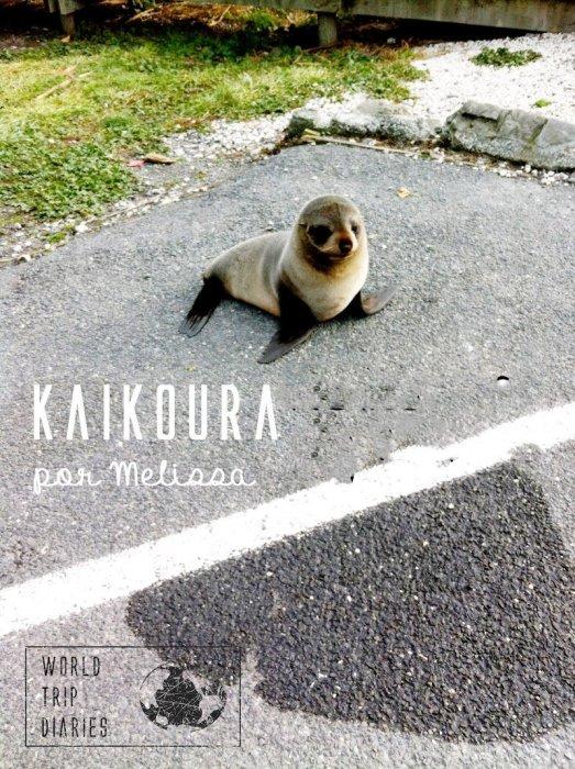 Melissa (13) fala sobre a viagem da família para Kaikoura, na Ilha Sul da NZ.