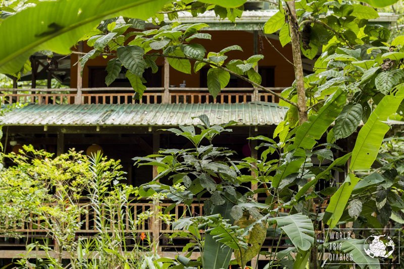 Finding a house in the jungle in Punta Uva, Costa Rica, was great luck. We loved it!
