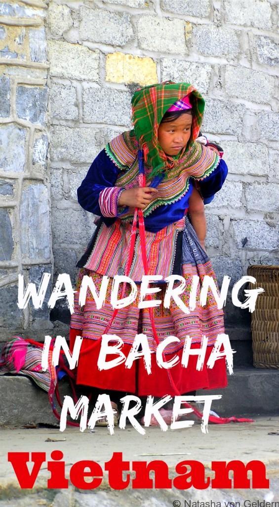 bacha-market-in-north-vietnam