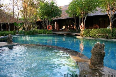 Swimming Pool at The Menjangan in West Bali National Park