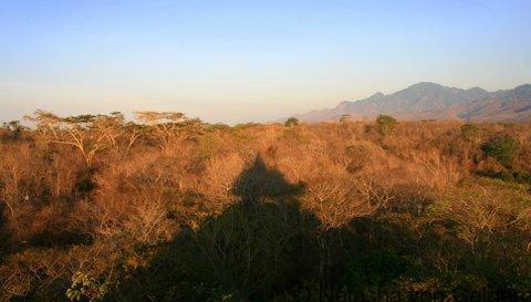 View of West Bali National Park from the Bali Tower at the Menjangan