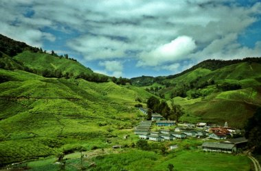 Tea village in the Cameron Highlands, Malaysia