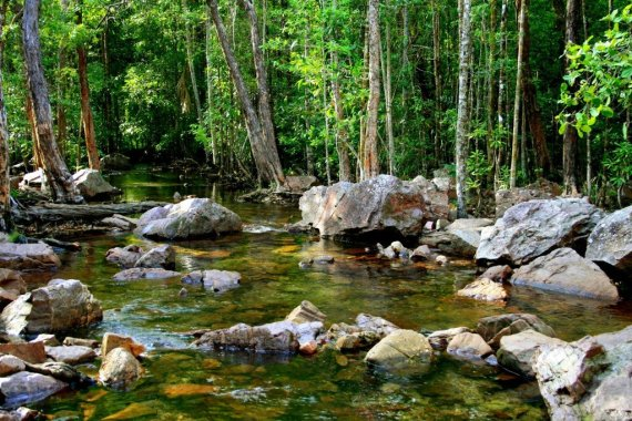 Florence creek, Litchfield National Park, Australia