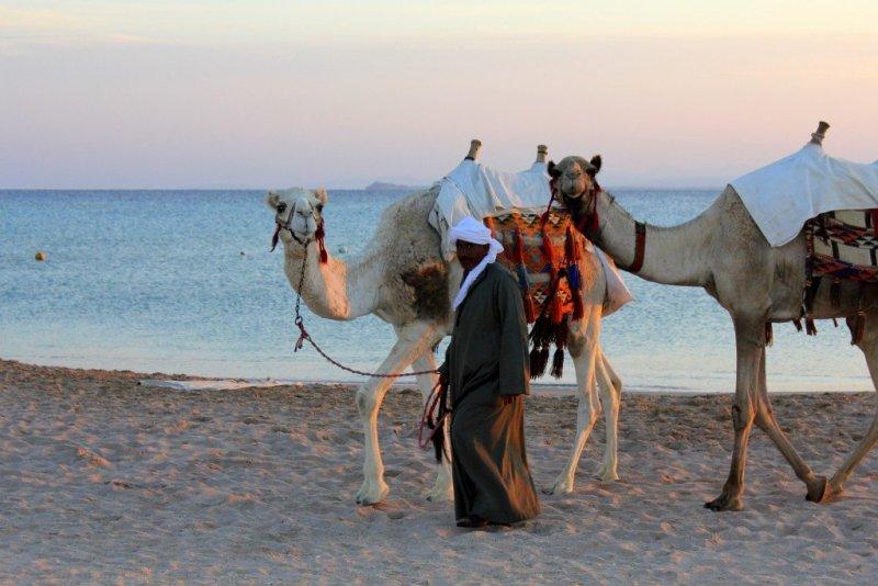 Soma Bay beach, Red Sea Egypt