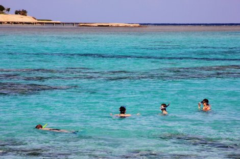 Soma Bay snorkelling - Egypt Red Sea