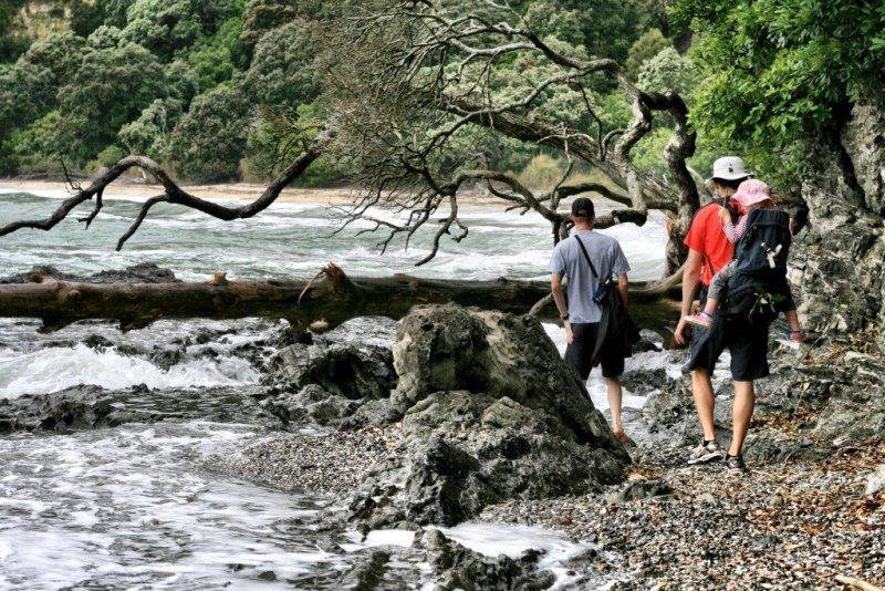 Nga-Tapuwai-o-Toi hike Whakatane New Zealand walk