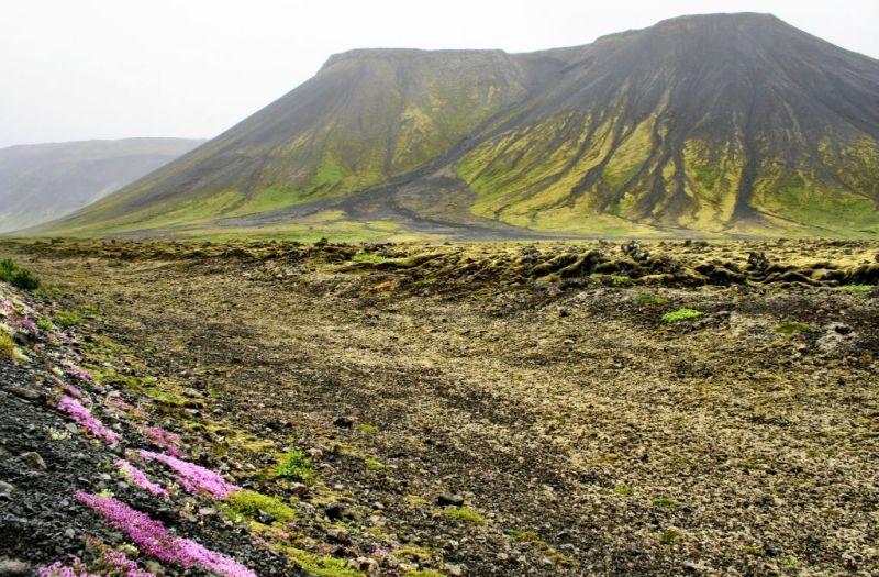 Iceland volcanic landscape