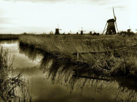 Kinderdijk black & white, South Holland, Netherlands