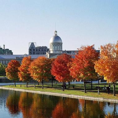 Marché_Bonsecours_and_Foliage Photo by AnnaKucsma