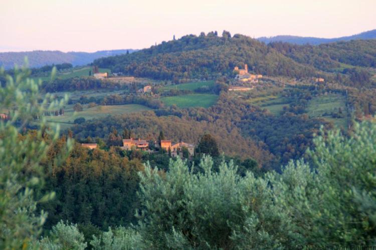 Chianti countryside Italy Photo by Natasha von Geldern