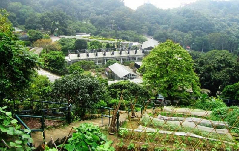 Kadoorie Farm and Botanic Garden, Hong Kong
