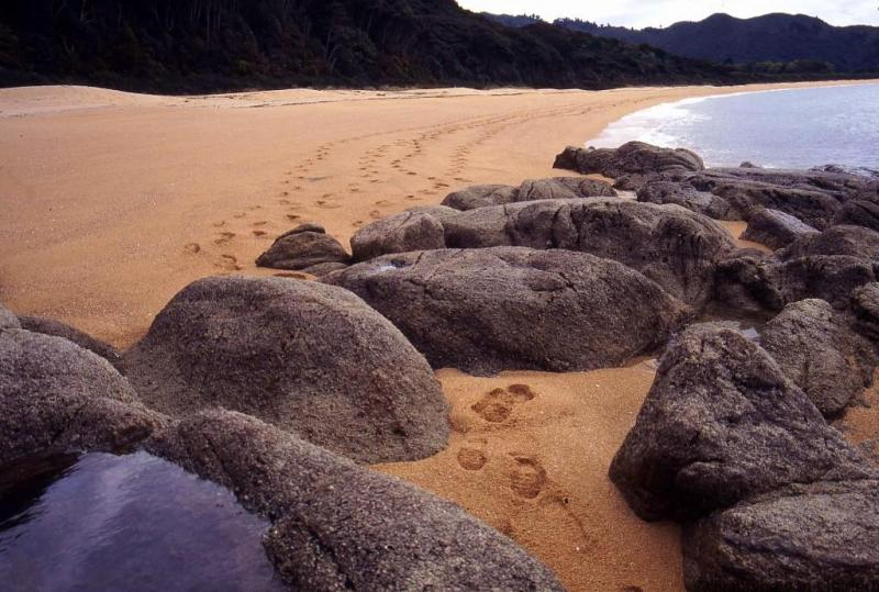 abel-tasman-national-park-new-zealand