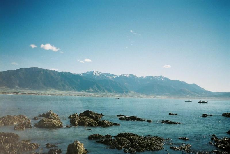 kaikoura-coastline-new-zealand