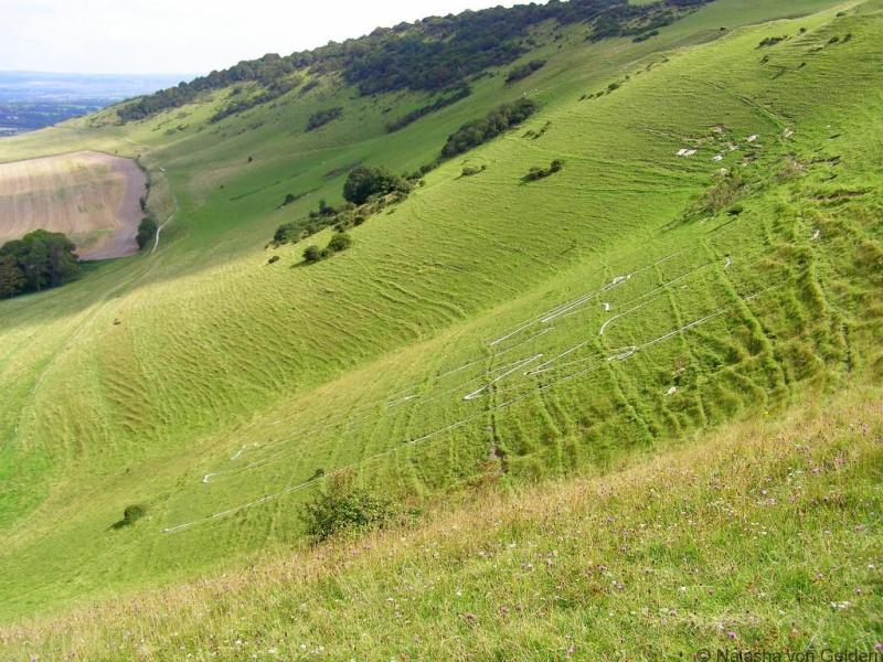 The Long Man of Wilmington, Sussex South Downs Way