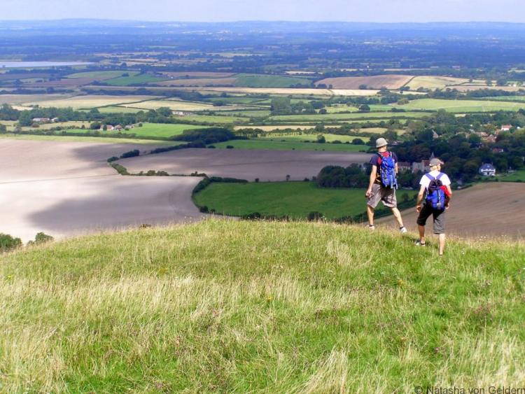 The South Downs Way hiking in England