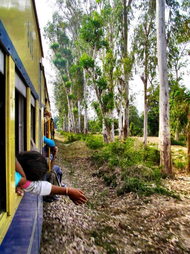 Kangra Valley Railway on the train India