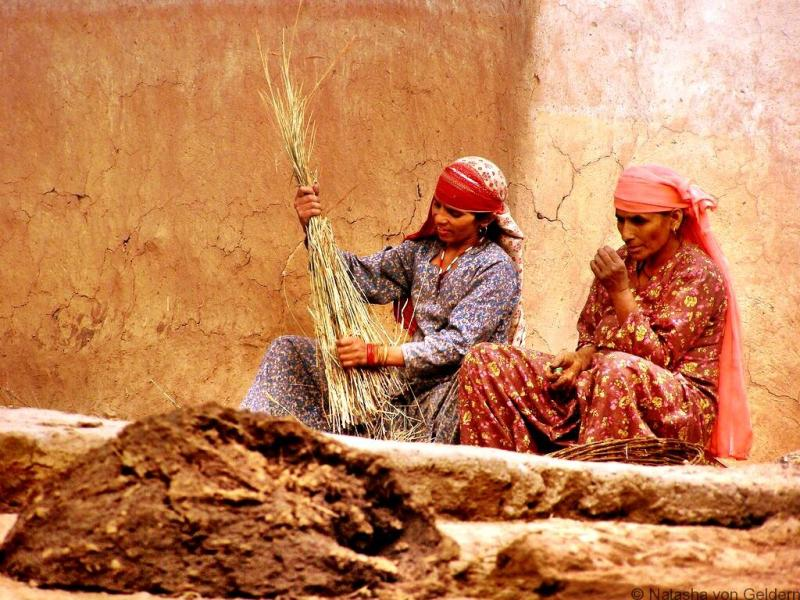 Kareri Village life trek from McLeod Ganj India