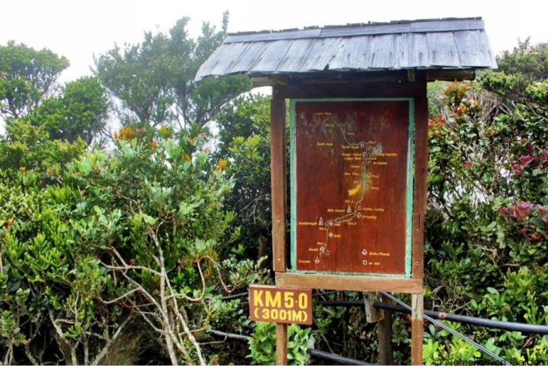 Mt Kinabalu hike waymark Malaysia