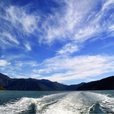 Cruising the Marlborough Sounds New Zealand web