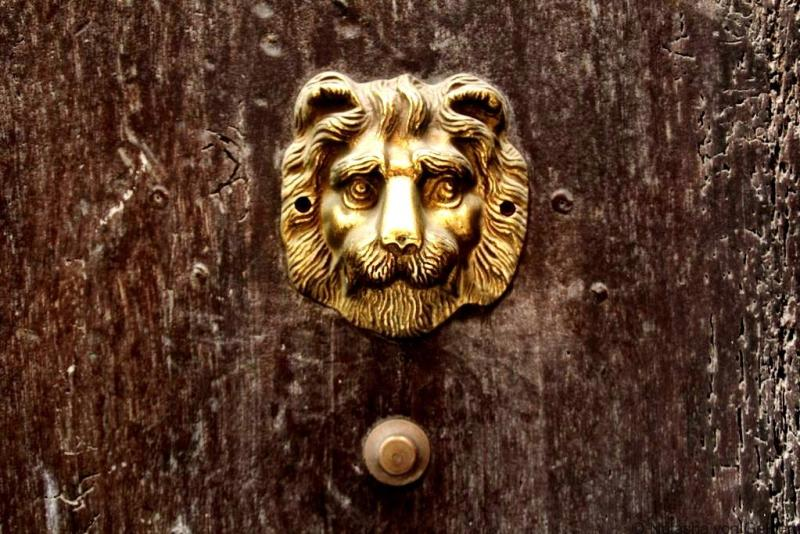 Lion of Lyon France