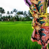 Wandering in Ubud, Bali