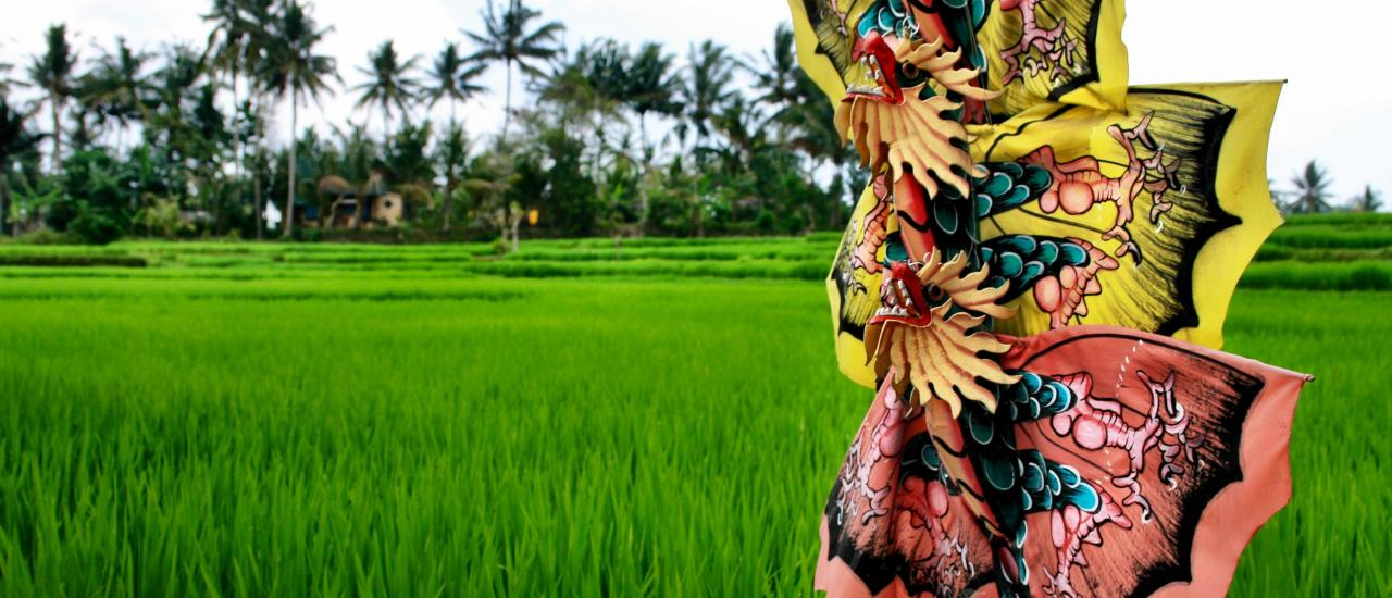 Kites and rice fields in Ubud Bali
