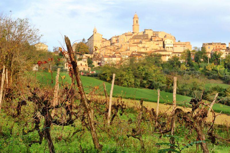 Petritolli from La Scentella Val d'Aso Le Marche region Italy
