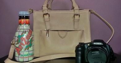 Perfect Travel Bag
