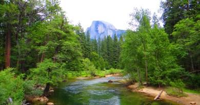 Yosemite Sentinel Bridge View