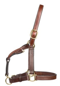 Weaver Halter with cheek clip