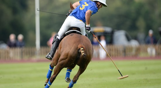 Gonzalito Pieres images of polo