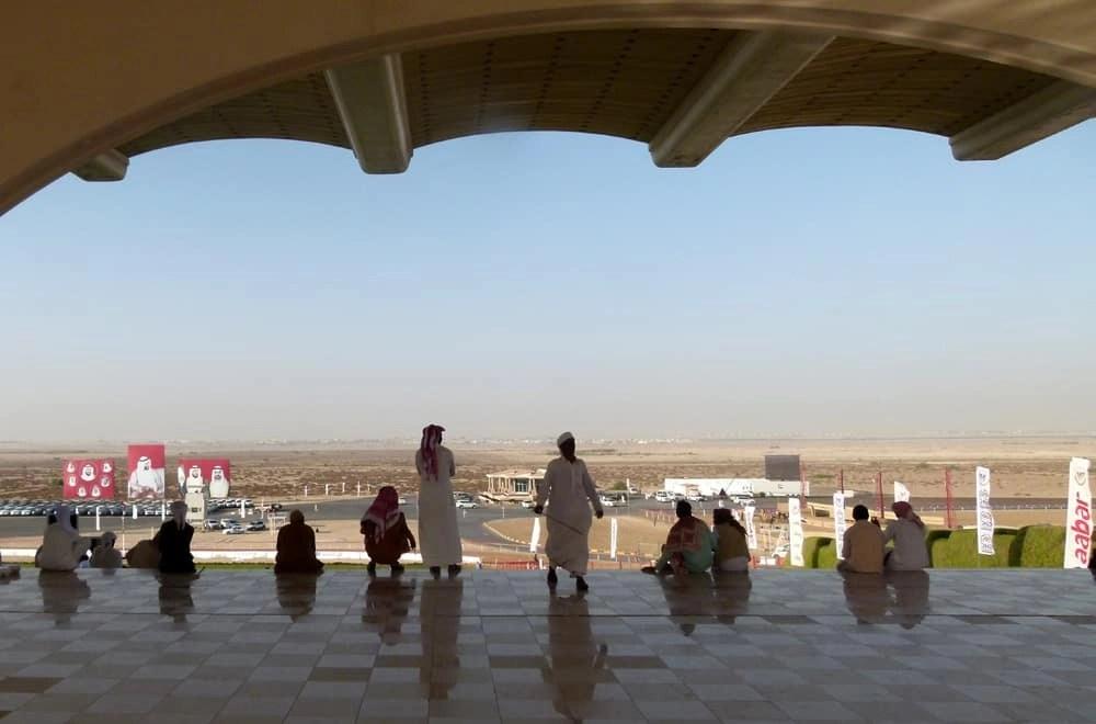 Camel races in Abu Dhabi