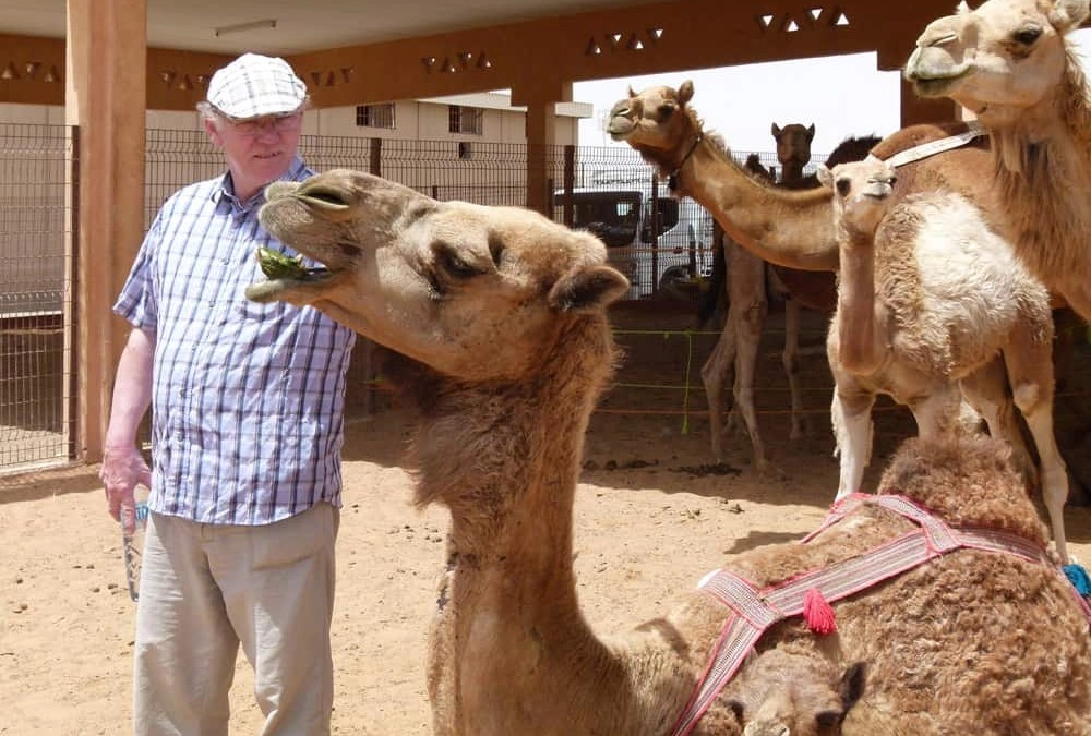 Visiting the Al Ain Camel Market