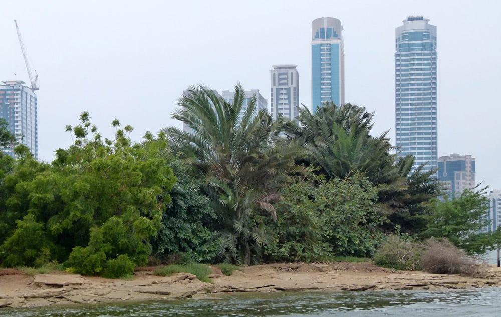 Island in the Sharjah lagoon
