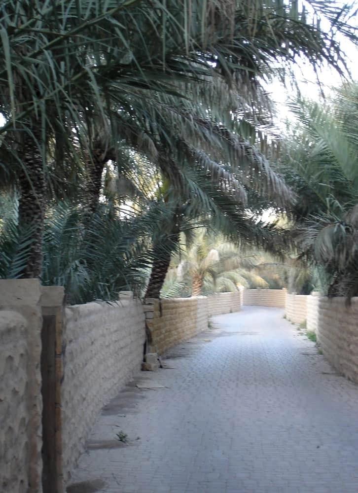Oasis, Al Ain, UAE