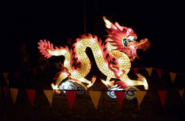 Dragon at the Lantern Festival, Christchurch, New Zealand