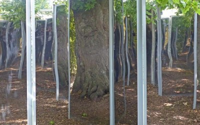 Sculpture and Surprises at The Burghley House Gardens
