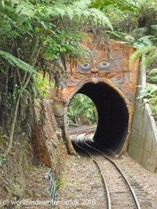 Tunnel on the Driving Creek Railway