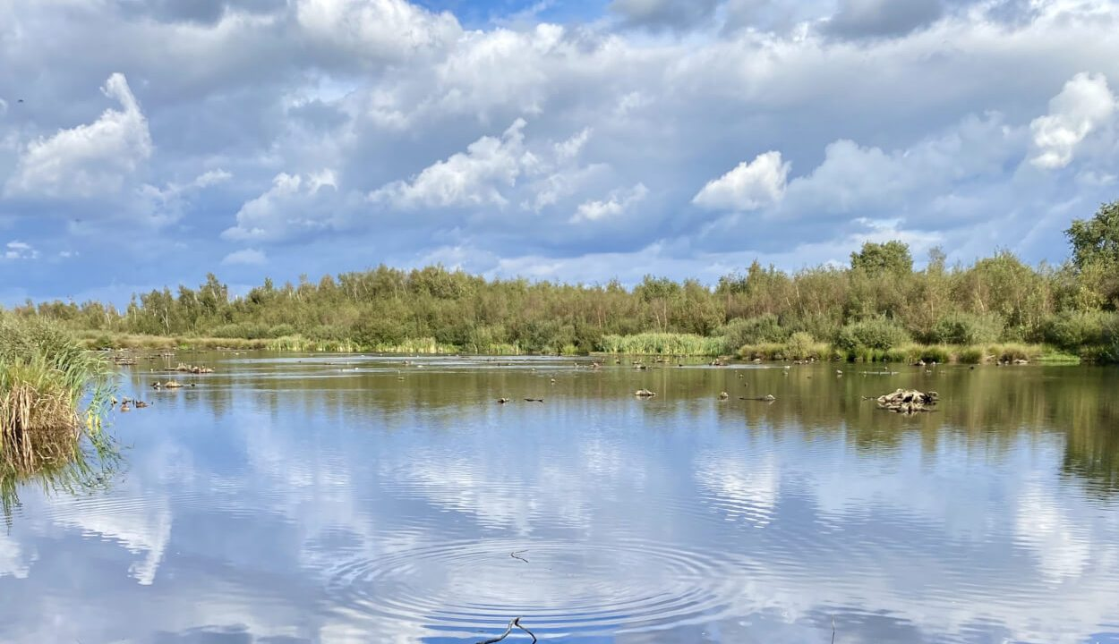 Wandelen in Limburg: NP de Groote Peel