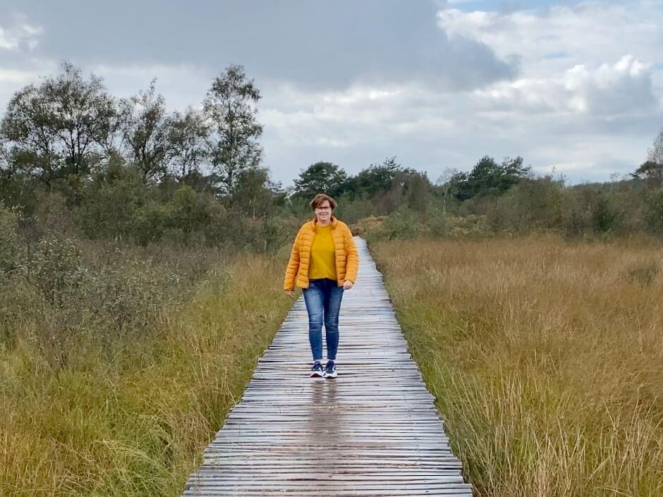 Wandelen Groote Peel Ospel | Knuppelbrugroute langs Meerbaansblaak