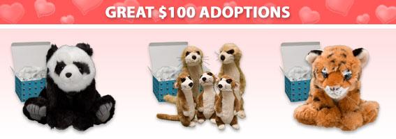 Great $100 Adoptions