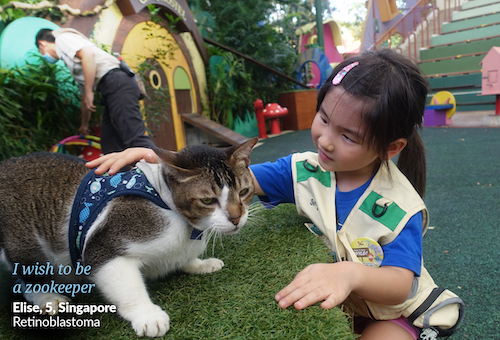 I wish to be a zookeeper