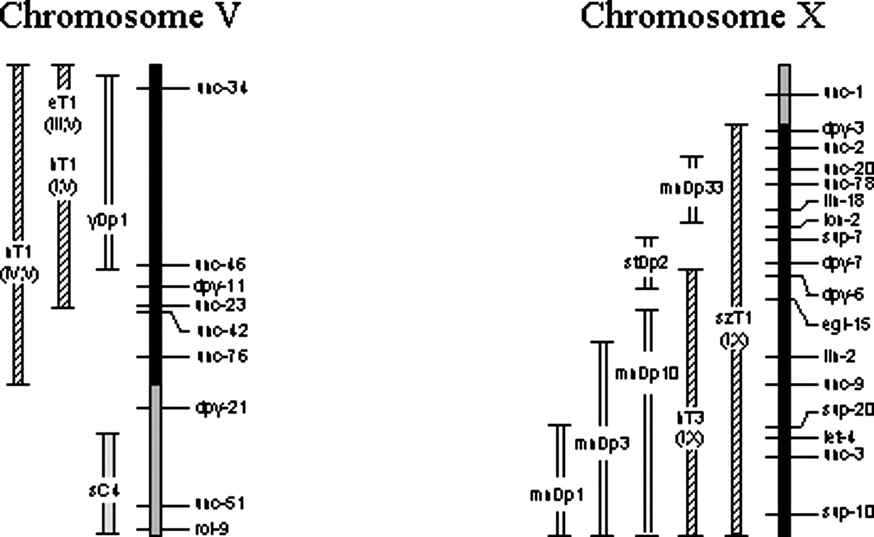 Chromosome Mapping; Gene Mapping; Linkage Mapping