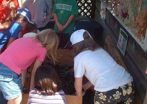 School children digging in a worm composting bin