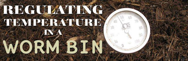 Regulating-Temperature-in-a-Worm-Bin