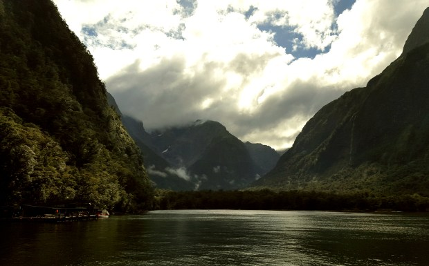 Milford Sound Fjord | South Island | New Zealand