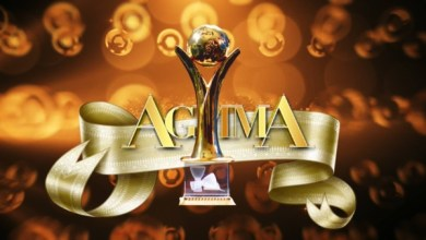 Photo of AGMMA 2017 AWARD WINNERS || @AGMMA